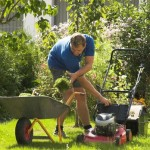 Foto: Briggs and stratton